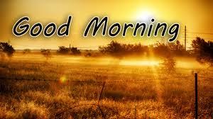 good morning we need fun
