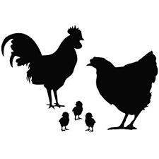 Amazon Com Chicken Family Animal Decal Vinyl Removable Decorative Sticker Black 5 Inches Home Kitchen