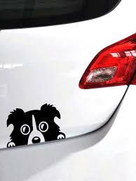 Buy Car Sticker Reflective Collie Dog Design Cartoon Car Sticker Car Sticks Decals At Jolly Chic