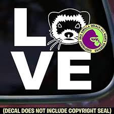 Amazon Com The Gorilla Farm Love Word Ferret Weasel Ferrets Vinyl Decal Sticker Car Window Door Wall Bumper Laptop Sign White Home Kitchen