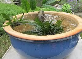 make a water bowl garden small water