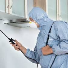 Rk Pest Control, Nanganallur - Residential Pest Control Services in Chennai  - Justdial