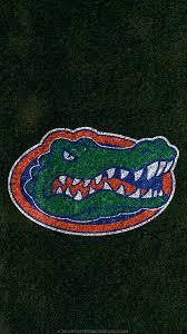 20464 gator wallpaper for ipad