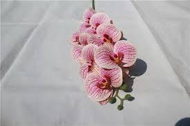china phalaenopsis artificial
