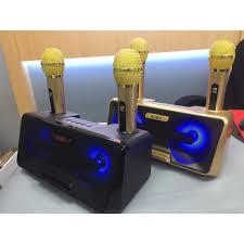 Loa Bluetooth Karaoke SDRD SD-301 Kèm 2 Mic Không Dây, Loa karaoke xách tay  di động