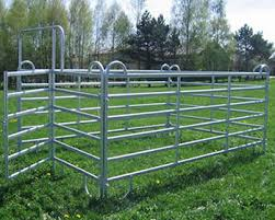Mesh And Pipe Horse Fencing For Corrals And Pasture
