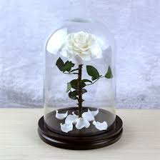 glass ball whole white rose
