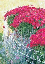 Roll Flat Top Garden Fence Manufacturer In Tianjin China By Tianjinpanyamgarden Horticulturalproductsco Ltd Id 4198011