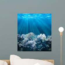 Tranquil Underwater Scene Wall Decal Wallmonkeys Com
