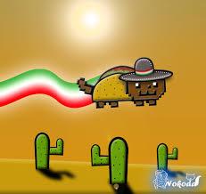 free taco cat by nokoda16