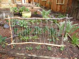 Pin By Heather Dobbs On My Garden Projects Diy Garden Trellis Vegetable Garden Trellis Pea Trellis