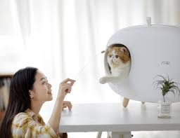 Elegant Enclosed Litter Boxes : Makesure cat litter box