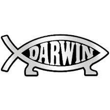 Darwin Fish Plastic Auto Emblem Silver 5 25 X 2