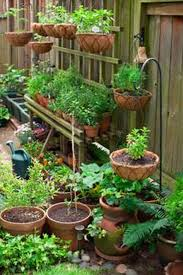garden small vegetable gardens foxy