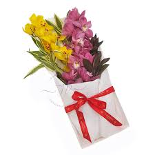 double orchid gift box