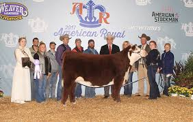 Congratulations to Abby Bell of Bristow,... - National Junior Hereford  Association | Facebook