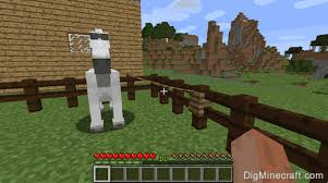 How To Use A Lead On A Horse In Minecraft