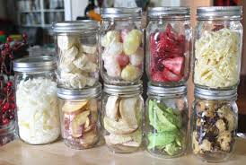 beginner s guide to home freeze drying