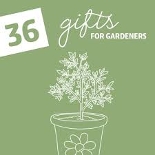 36 gifts for gardeners with the green