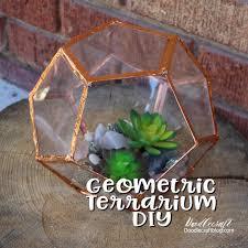 geometric succulent terrarium diy