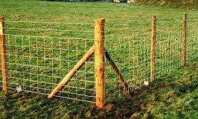 Wooden Fence Stakes Timber Fence Stakes Jacksons Fencing