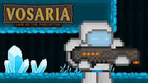 Vosaria: Lair of the Forgotten for Nintendo Switch - Nintendo Game ...