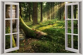 Free Download Details About Huge 3d Window Enchanted Forest View Wall Stickers Mural 2000x1333 For Your Desktop Mobile Tablet Explore 47 3d Forest Wallpaper Forest Hd Wallpaper Forest Wall Murals Wallpaper