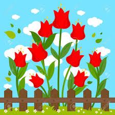 Red Tulip Flowers Behind Wooden Fence Royalty Free Cliparts Vectors And Stock Illustration Image 90595002