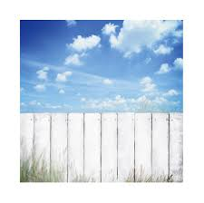 Laeacco Sunny Day Sky Wooden White Fence Photo Background Wall Decor Party Baby Child Portrait Photography Backdrop Photo Studio Background Aliexpress