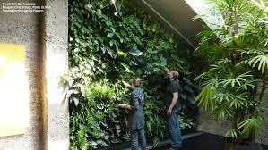 florafelt vertical garden living wall