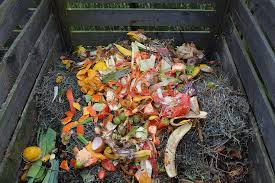 How to make compost at home step by step