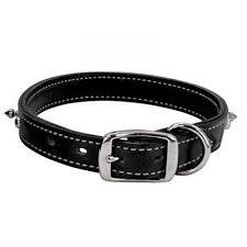 weaver leather spike dog collar