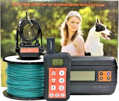 Koolkani Remote Training Dog Collar Inground Electronic Fence System 1 Collar Chewy Com