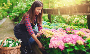 before starting your own gardening business