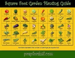 square foot garden planting guide