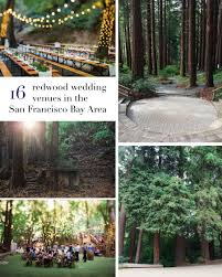 16 amazing wedding venues with redwoods