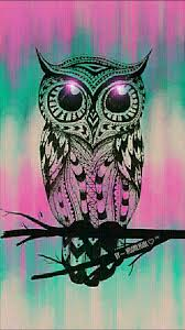 cute pink owl wallpaper for iphone 11