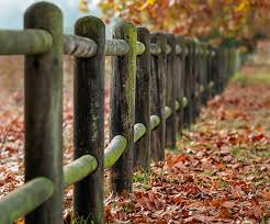 Fall Foliage Garden Fences And Gates In Autumn