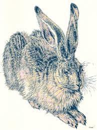 Young Hare Serigraphy After Albrecht Durer Renaissance Fine Art Animal Art Nursery Wall Art Kids Room Decor Limited Edition Of 20 Printmaking By Vitali Komarov Saatchi Art