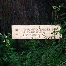 cute quotes believe vintage indie grunge green dark future nice