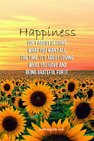 happiness quote happiness isn t about getting what you want all