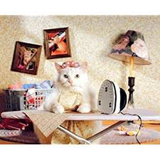 Amazon Com Funny Cute Cat Animal Kids Room Wall Decor Art Print Poster Picture 16x20 Posters Prints