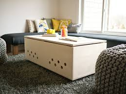 modern pet crate coffee table