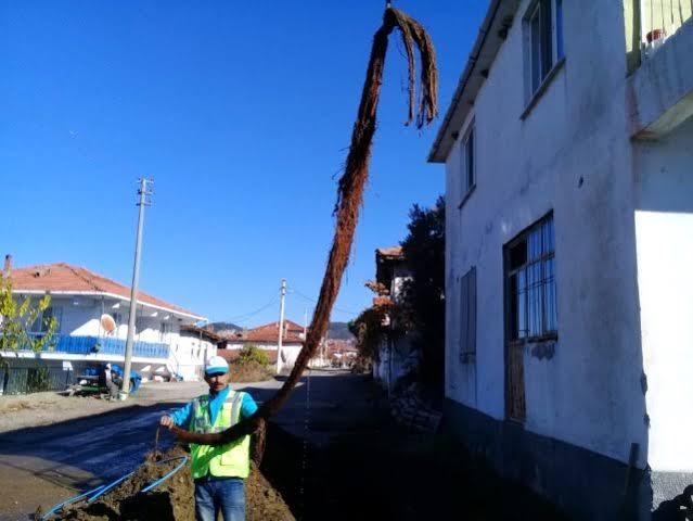 """MASKİ Genel Müdürlüğü, Gördes'in Güneşli Mahallesinde içme suyunda yaşanan azalma nedeniyle yaptığı çalışma sırasında hattın içerisinden 6 metre uzunluğunda halk arasında kunduz adı verilen ağaç kökü çıkardı. ile ilgili görsel sonucu"""""""