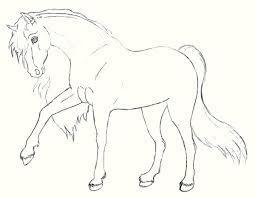 Paarden Kleurplaat Tinker