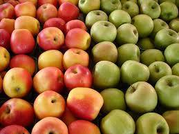 Hasil gambar untuk buah apel