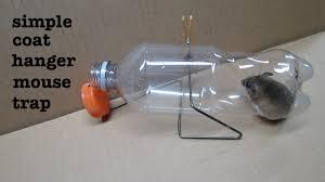 simple coat hanger humane mousetrap