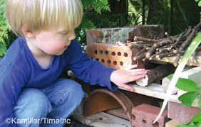 How to build a bug hotel - Amateur Gardening