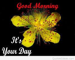 good morning twitter happy new year