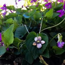 Sweet violet, I just want to eat you all... - Adele Stewart Maker | Facebook